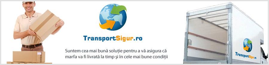 Transport Sigur Logo