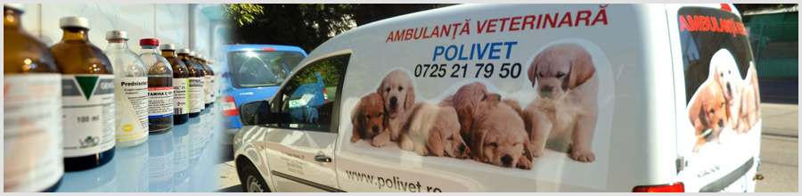 Polivet-clinica veterinara-Bucuresti Logo