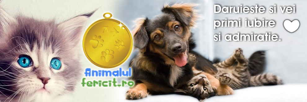 Animalul Fericit pet shop online Logo