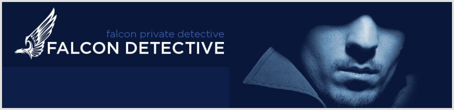 FALCON PRIVATE DETECTIVE Logo