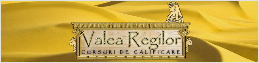 Centrul de formare profesionala VALEA REGILOR Logo