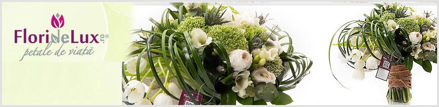 Floraria FlorideLux.ro Logo