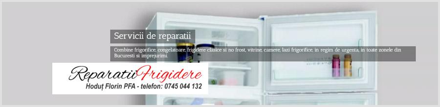 Hodut Florin PFA - Reparatii frigotehnice Bucuresti Logo