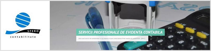 SFERO Contabilitate, audit si servicii de consultanta financiar contabila Cluj Napoca Logo