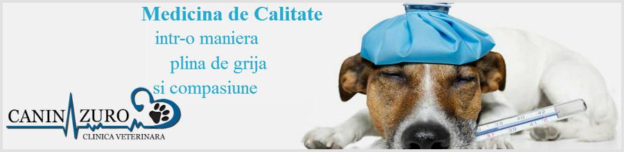 Clinica Veterinara Canin Azuro Logo