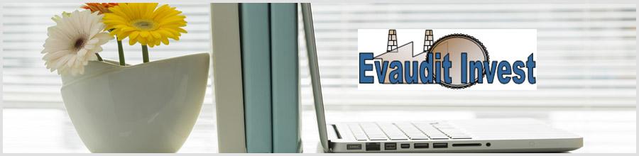 EVAUDIT INVEST contabilitate / fiscalitate, consultanta afaceri Iasi Logo