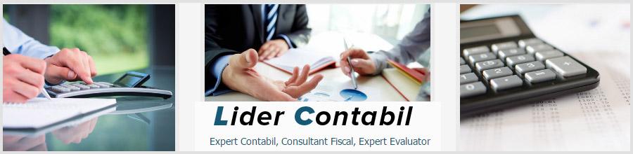 Lider Expert Accounting Logo