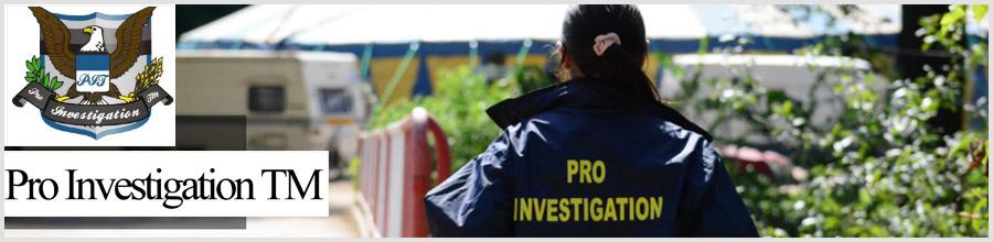 Pro Investigation TM Logo