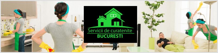 Best Clening Experts - Servicii Non Stop de curatenie, Bucuresti Logo