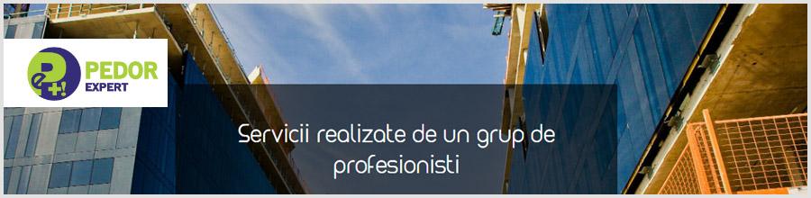 Pedor Expert Logo