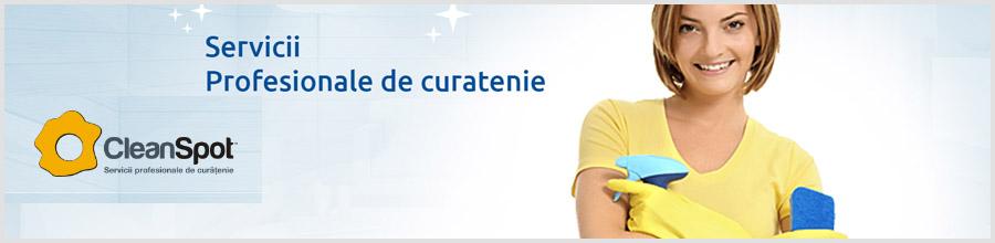 CleanSpot - Servicii Profesioniste de Curatenie Bucuresti Logo