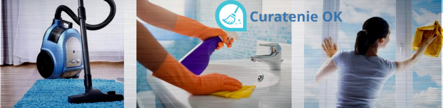 CERTTO CLEAN SERV servicii curatenie in Bucuresti Logo