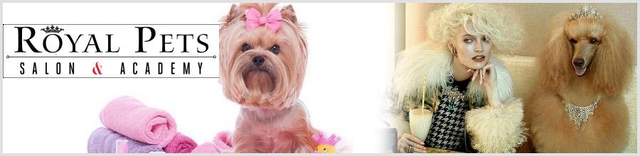 Salon ROYAL PETS Coafor canin, Sector 1 (zona 1 Mai) Logo