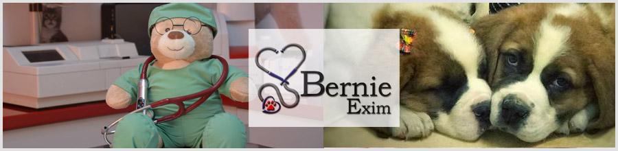 Cabinet veterinar BernieVet sector 6 Logo