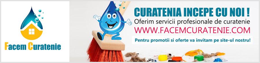 Servicii profesionale de curatenie Bucuresti, Ilfov Logo