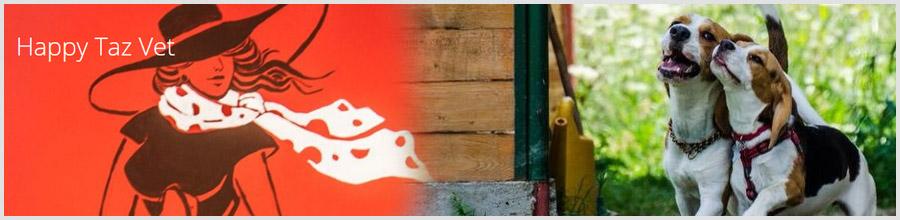 HAPPY TAZ VET Logo