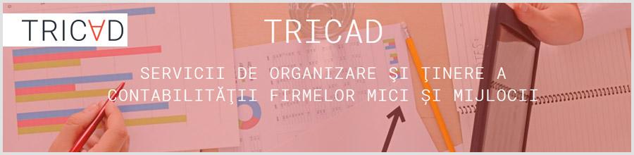 Tricad Logo