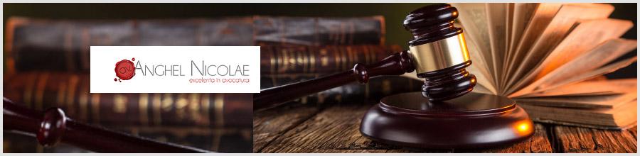 Cabinet avocat Anghel Nicolae Logo