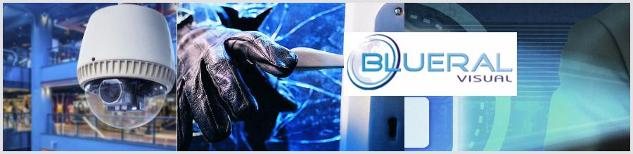 BLUERAL VISUAL montare, proiectare sisteme de securitate Braila Logo