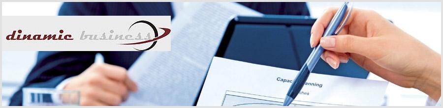 Dinamic Business servicii de contabilitate, expertiza contabila Bucuresti Logo