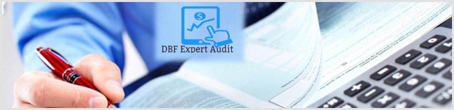 DBF Expert Audit Logo