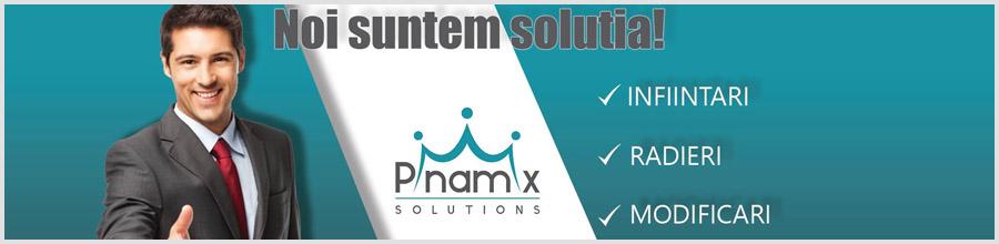 PINAMIX SOLUTIONS - Consultanta infiintare firma Logo