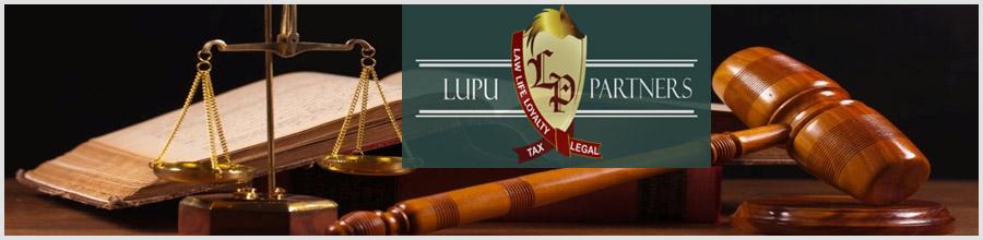 Lupu & Partners - servicii integrate de consultanta Logo