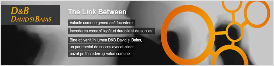 Societatea Civila de Avocati David si Baias Logo