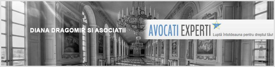 Diana Dragomir si Asociatii - Societate de Avocatura Bucuresti Logo