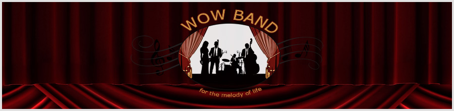 Formatia Wow Band Logo