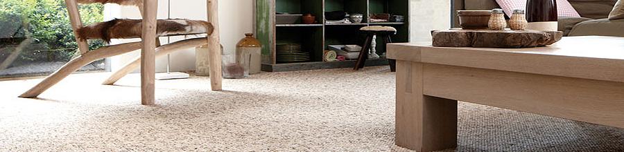 Pro Confort, Bucuresti - Mocheta, linoleum, covor PVC, tapet si covoare Logo