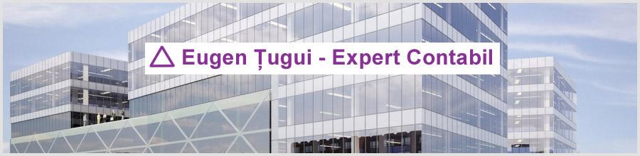 Cenzorat si expertiza contabila ET&T Eugen Tugui - Bucuresti Logo