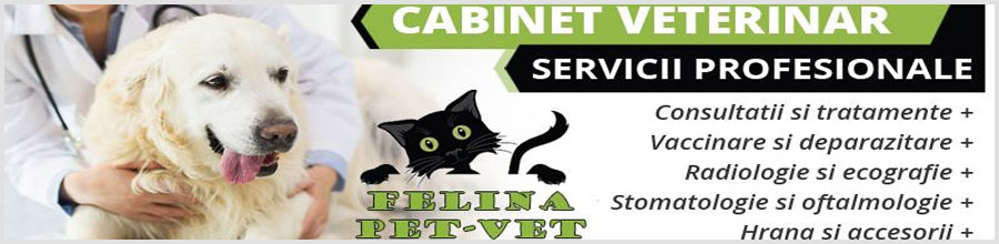 Felina Pet-Vet-cabinet veterinar-Magurele Logo