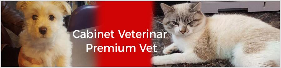 Cabinet Veterinar Premium Vet Logo