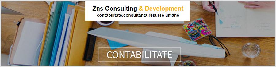 Zns Consulting & Development consultanta, contabilitate Bucuresti Logo