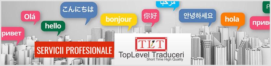 TopLevel - Birou Traduceri Bucuresti Logo