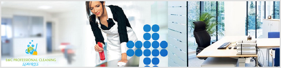 E&C Professional Cleaning Services Bucuresti Logo