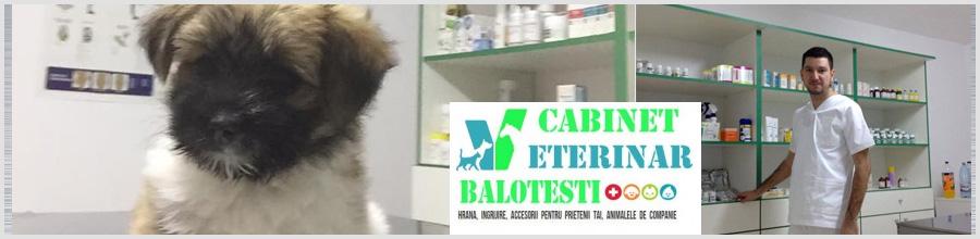 Cabinet Veterinar Balotesti Logo