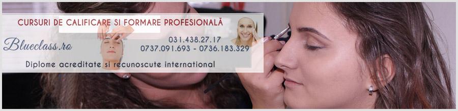 Blue Class - Cursuri de calificare cosmetica si masaj Bucuresti Logo
