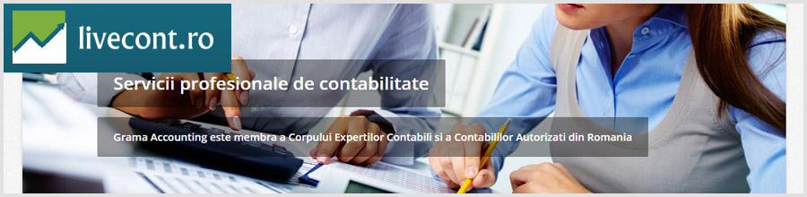 Servicii contabilitate, Expert contabil Bucuresti Logo