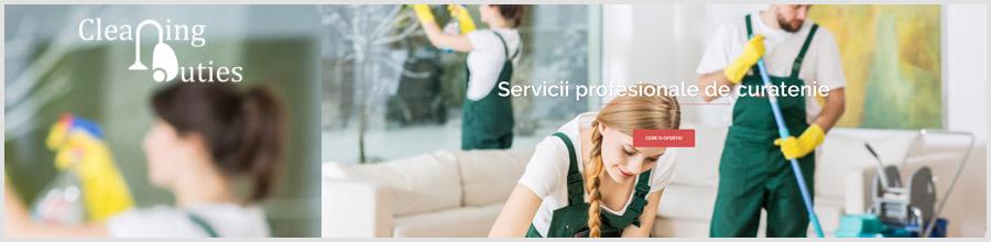 Cleaning Duties servicii curatenie Bucuresti Logo