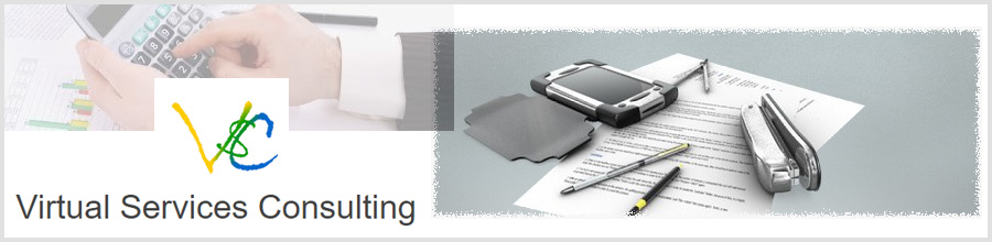 Virtual Services Consulting Bucuresti Logo