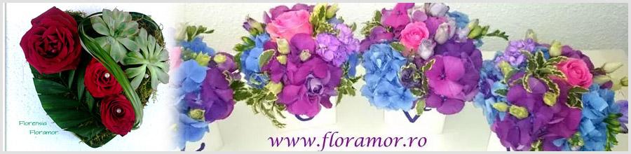 FLORAMOR Decoruri florale nunta si botez Bucuresti Logo
