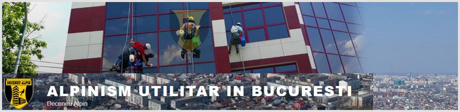 Deceneu Strategic - Alpinism Utilitar in Bucuresti Logo