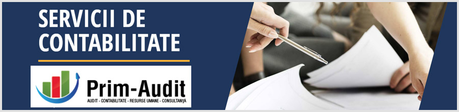 PRIM AUDIT Servicii de Audit, Asistenta fiscala si Consultanta in afaceri Bucuresti Logo