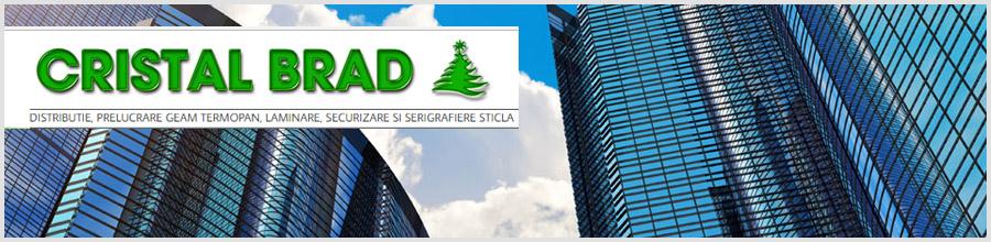 CRISTAL BRAD Logo