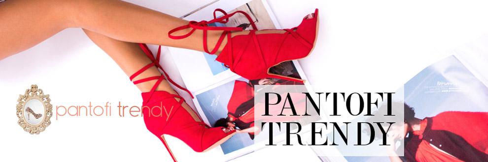 Pantofi Trendy magazin online incaltaminte Logo