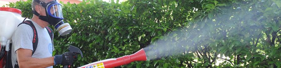 Eco Pest Control - Servicii deratizare, dezinsectie, dezinfectie si ignifugari, Bucuresti Logo
