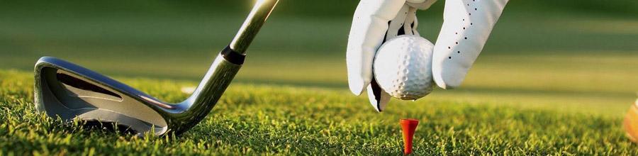 Champ du Golf - Club de golf, Ilfov Logo
