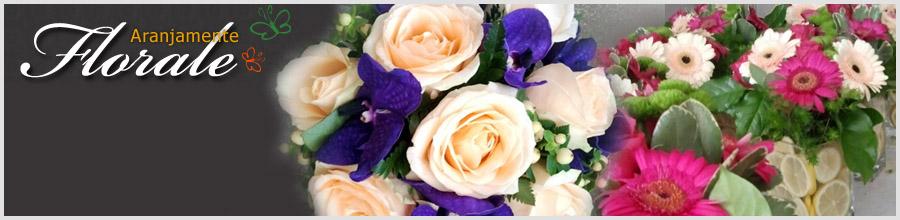 NATALIA PROD-IMPEX Magazin online aranjamente florale Bucuresti Logo
